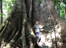 Samantha in front of a massive tree in the Amazon rainforest