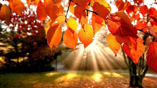 Autumn, the Season of Change
